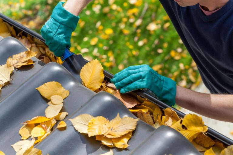 Man cleaning the gutter from autumn leaves